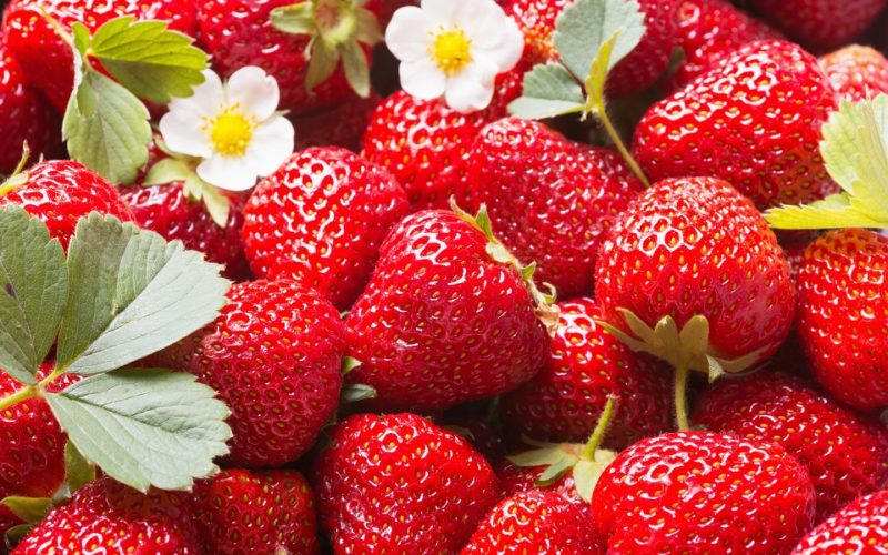Fresh ripe perfect strawberry - Food Frame Background